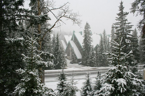 A photo of Banff in snow, taken by Dr. Ivan Herman